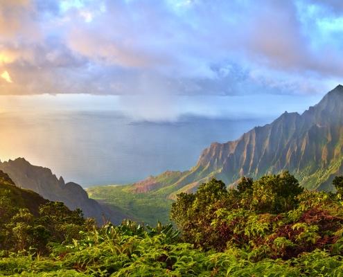 Hawaii Wide Online Marketing & Web Design
