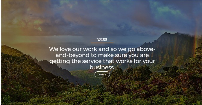 Hawaii seo company value
