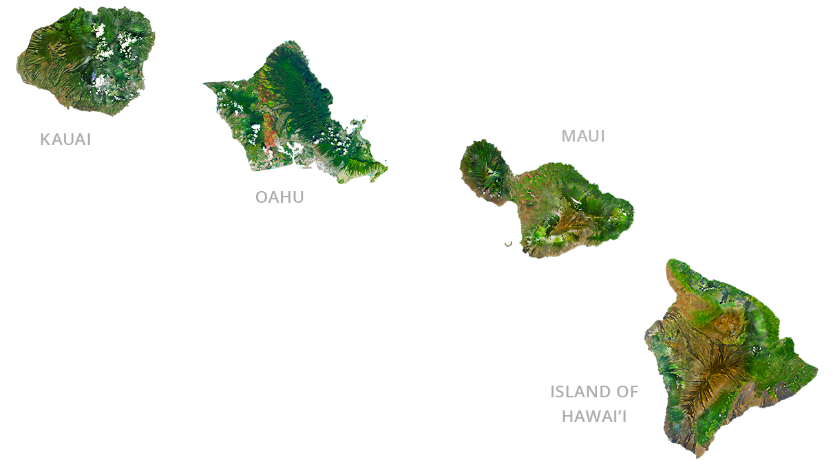 online marketing in Hawaii